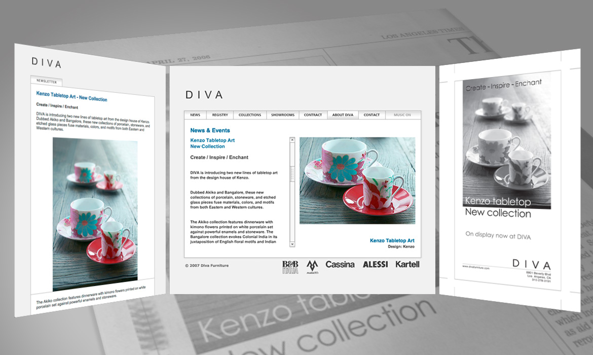 Newsletters, website, and newspaper ads for Diva